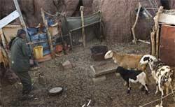 El coste real del gàz :  La omerta sobre la situacion de los derechos humanos en Tinduf.