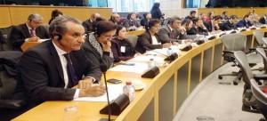 """Derechos Humanos: El """"Niet"""" europeo a las enmiendas de los eurodiputados pro-Polisario"""