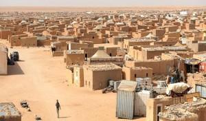 Sáhara Occidental: el Parlamento Europeo exige un censo en los campamentos de Tinduf en Argelia